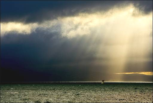 Harbour Sunbeams