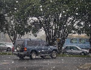 Snow in Waikanae 15 August 2011