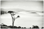 """Head above the Cloud"" - Highly Commended, Advanced Print - ©Shona Jaray"