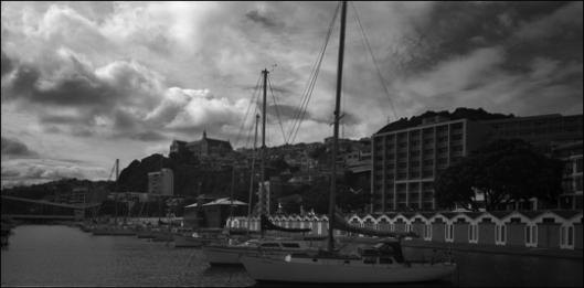 Port Nicholson Marina