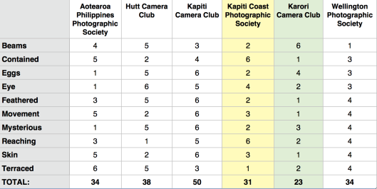 Wellington Interclub Print Battle Results 2013