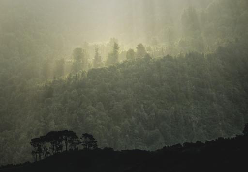 """""""Last Light"""" - Highly Commended, Advanced Print - ©Neil Gordon"""